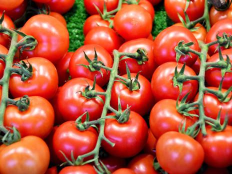 Magical Food - Tomato