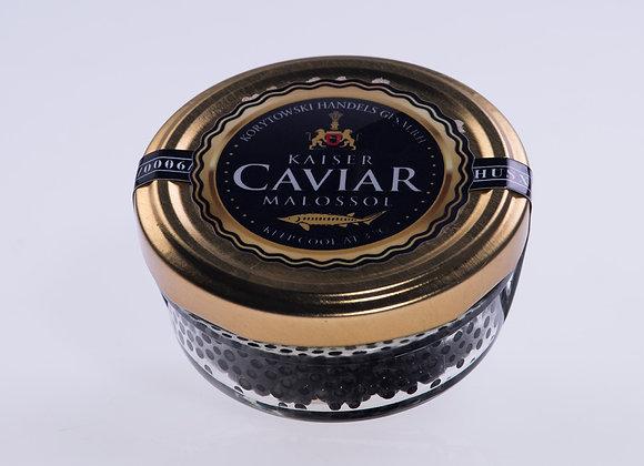 Kaviar vom Beluga-Sterlet Stör (auch Bester Stör genannt) / Huso huso/ Acipenser