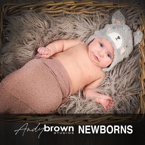Newborn Portrait Session