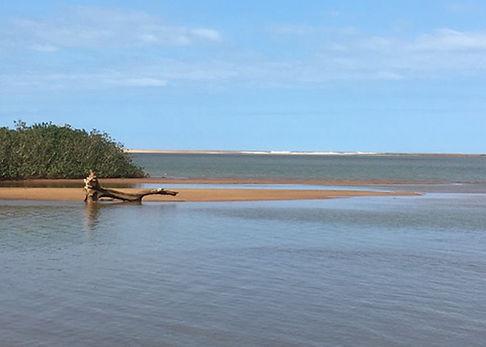 rio-doce-estuario-horiz.jpg
