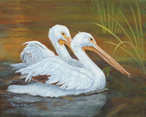 Duet in White  (White Pelicans)
