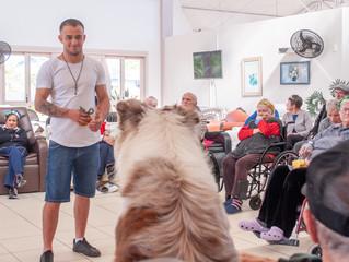 """Tarde de """"Pet Terapia"""" com Obediência Canina"""