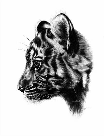 Baby Tiger ekatsart.png