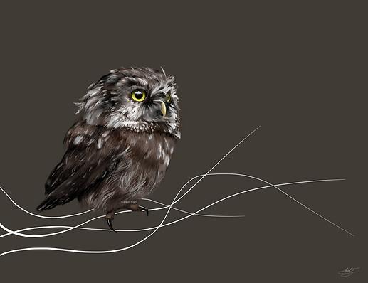 Baby Owl ekatsart.png