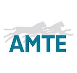 AMTE.png