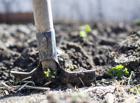 Promisibility: The Art of Digging an Assumption Pit