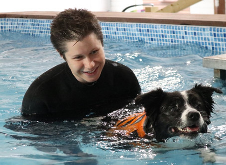 Hydrotherapy for canine arthritis