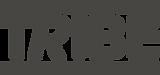 Copy of Copy of logo_1 (6).png