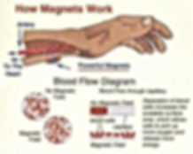 Magnets and the blood flow