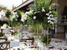 Casa_Bellamar_Cabo_Wedding_Photographer_Sara_Richardson-42954.jpg