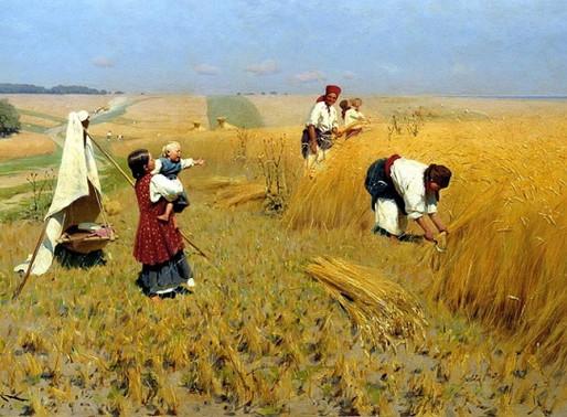 Мишустин поставил задачу повысить в России качество сельской