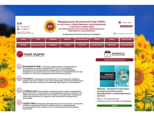 В рабочий режим запущен сайт Федерального экспертного совета (ФЭС)