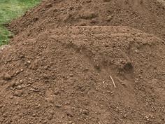 Screened Black Dirt