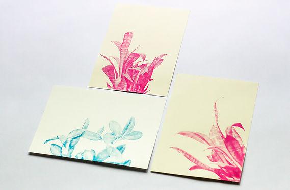 Drucken auf Papier