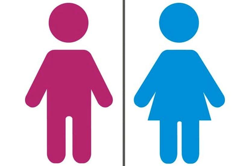 Image result for gender