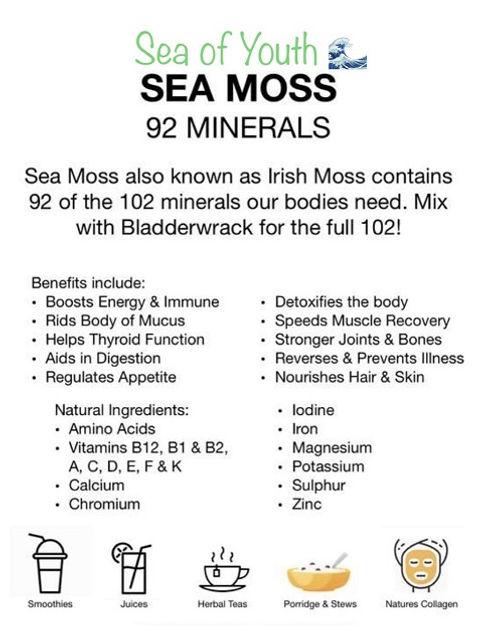 sea moss.jpg