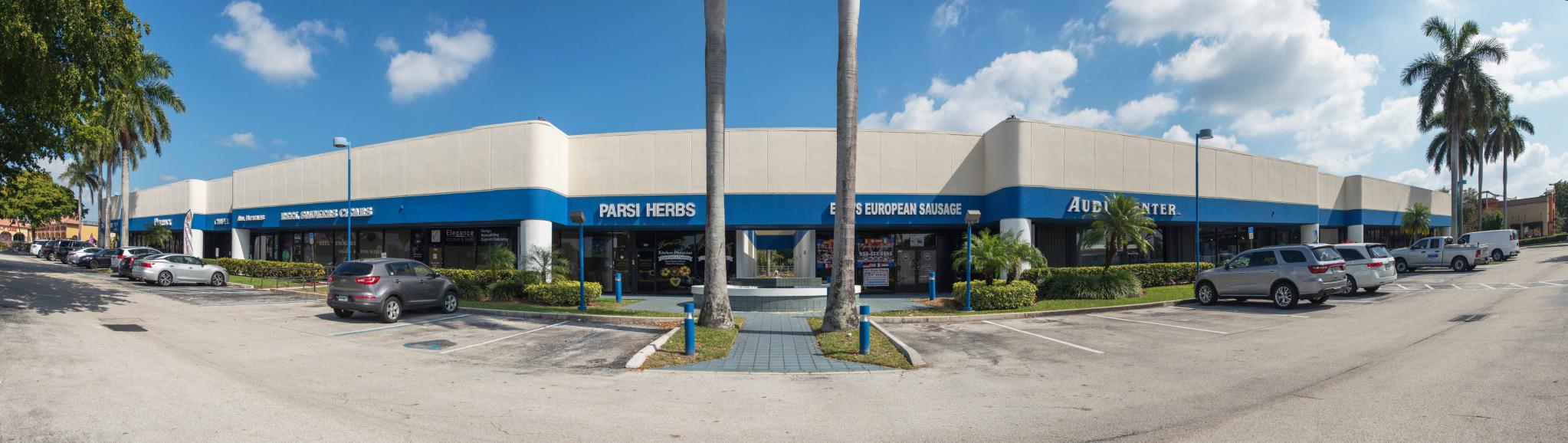 BuenaVista Plaza copy