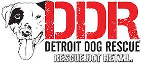 DDR 9135027-logo.jpeg