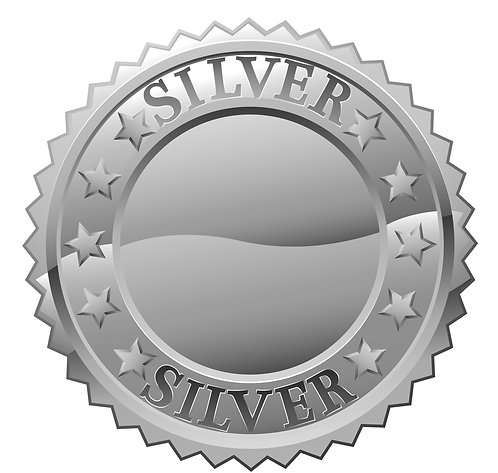 NEMTAC Silver Corporate Sponsor