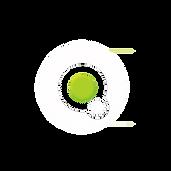 Logo V II 12d.png