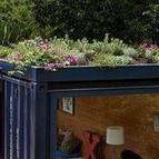 techo verde contenedor