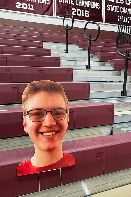 SuperFan in the Stands
