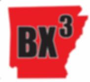 BX3 Logo_edited.jpg