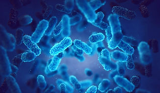 pathogenic-bacteria-germ-infection-epide