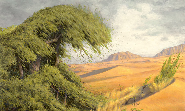 Rampant Growth, by Steven Belledin, owned by Wizards of the Coast© All Rights Reserved.