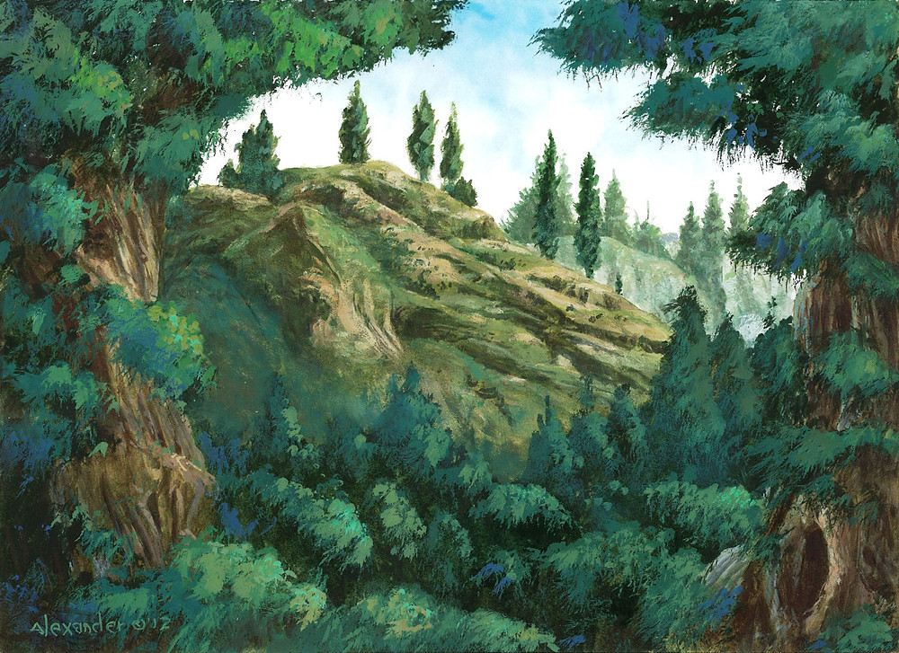 Forest (Theros), by Rob Alexander, owned by Wizards of the Coast © All Rights Reserved.