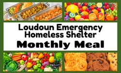 Copy of Copy of Loudoun Emergency  Homel