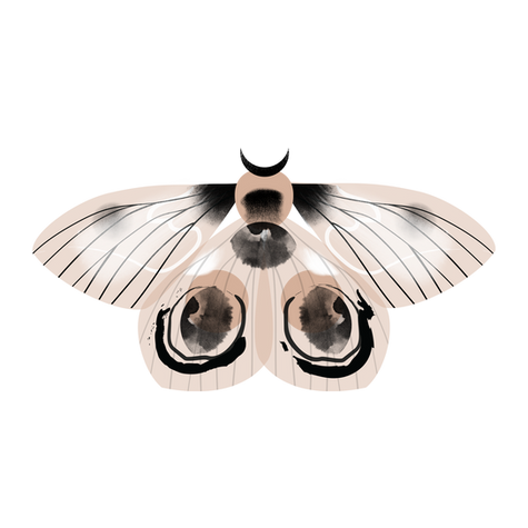 pinkspot-pink-moth-contact.png