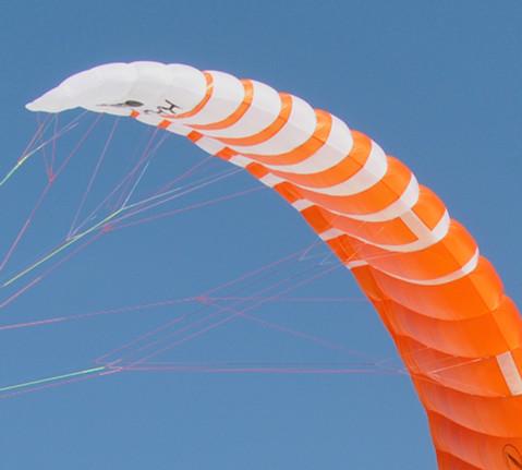 Falcon left wingtip_1.jpeg