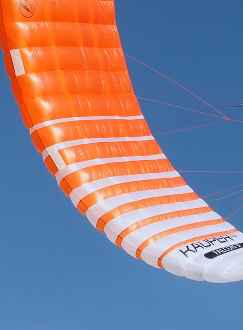 Falcon left wingtip_2.jpeg