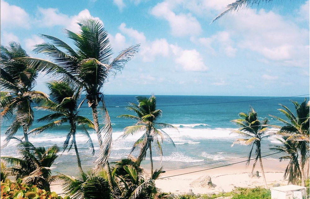 Travel in Barbados on a budget