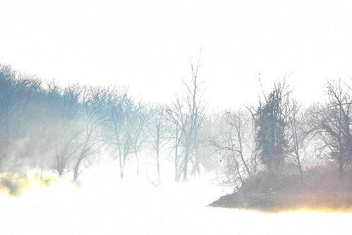 morning mist i