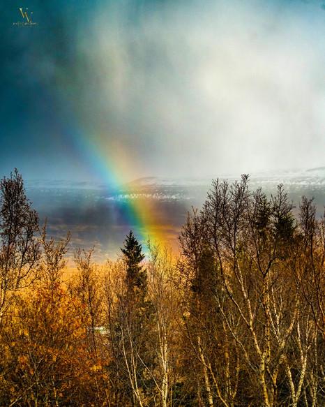 Rainbow Over Looking Akureyri Iceland