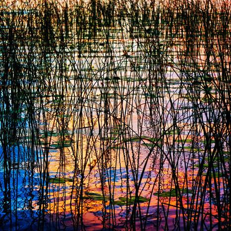 Minnesota Lake Sunset Reflection
