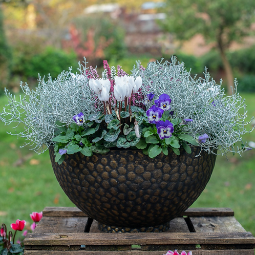 Lowther Bowl Planter