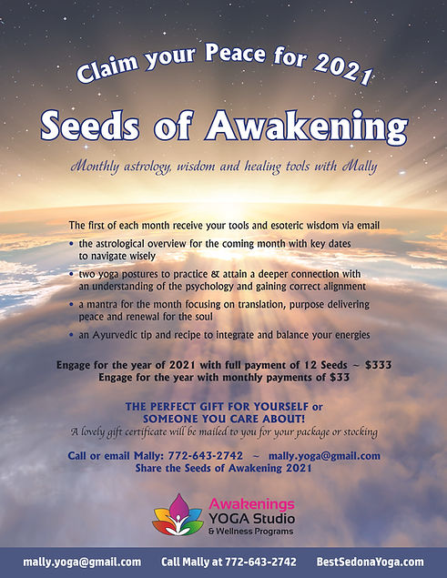 Seeds of Awakening2.jpg