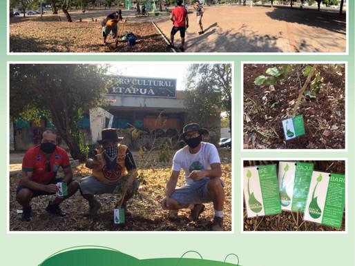 Rock Cerrado:  ato pelo meio ambiente lembra edição adiada