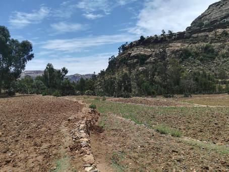 The adventures of an ethnoarchaeologist in Ethiopia