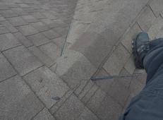 roof_corvus.jpg