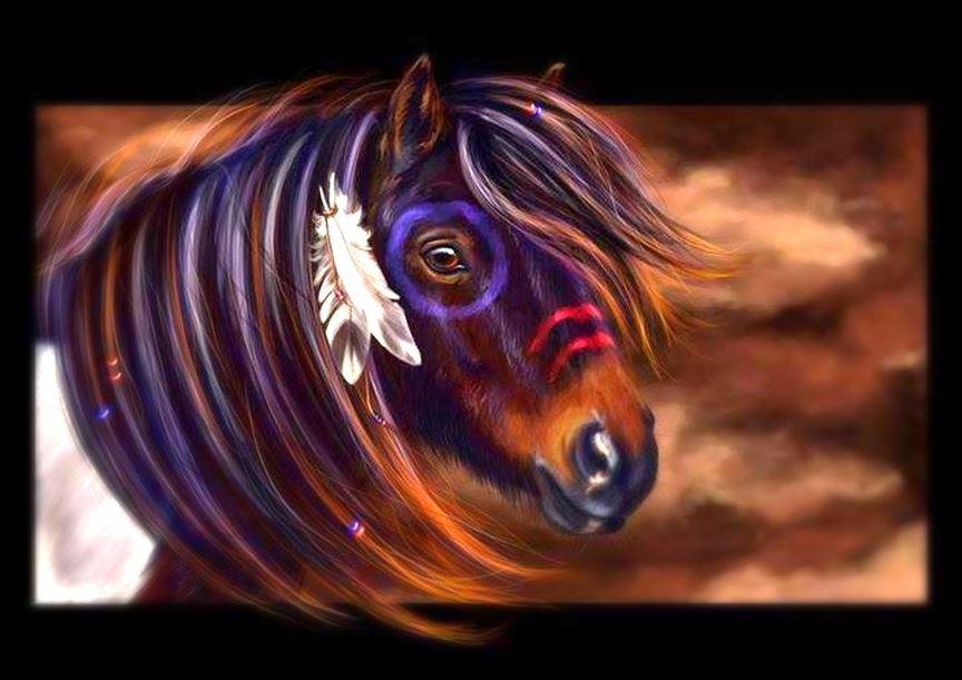 Indian War Horse.JPG