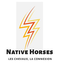 nATIVE HORSES MARRON.JPG
