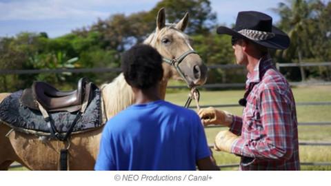 Face à Face: détenus et chevaux sauvages s'apprivoisent mutuellement.