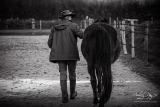 eQuintessence: marcher la voie du cheval avec l'approche Eponaquest ®