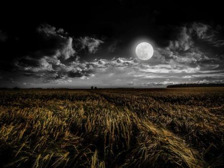 La pleine Lune des Moissons et l'abondance - projets associatifs