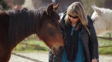 Formation 12 au 14 Mars 2021: préparer et éduquer vos chevaux pour la médiation équine.