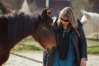 Formation 4 au 6 JUIN 2021: préparer et éduquer vos chevaux pour la médiation équine